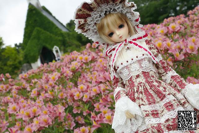 IMG_1233_M.jpg