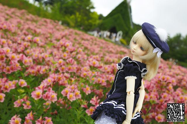 IMG_1276_M.jpg