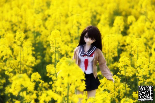 IMG_9248_M.jpg