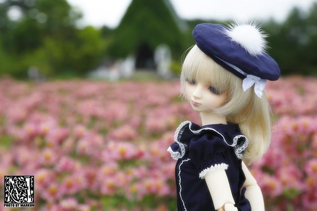 IMG_1271_M.jpg