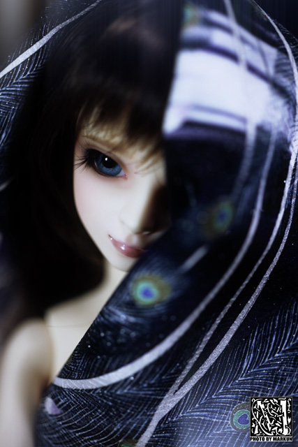 IMG_4666_M2.jpg