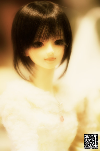 IMG_7621_M.jpg