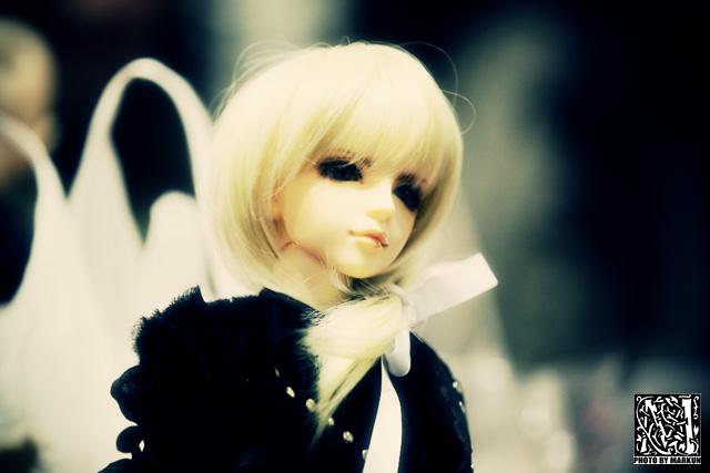 IMG_7623_M.jpg